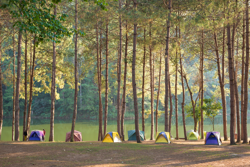 4 places to camp you can t miss for Fish creek pond