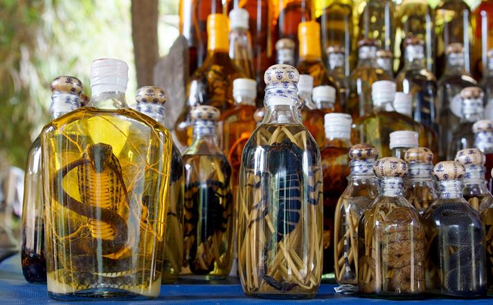 8 Oddest Food Items Snake Wine