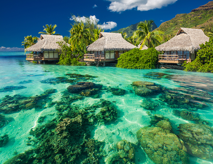 Paradise in the Polynesian Islands