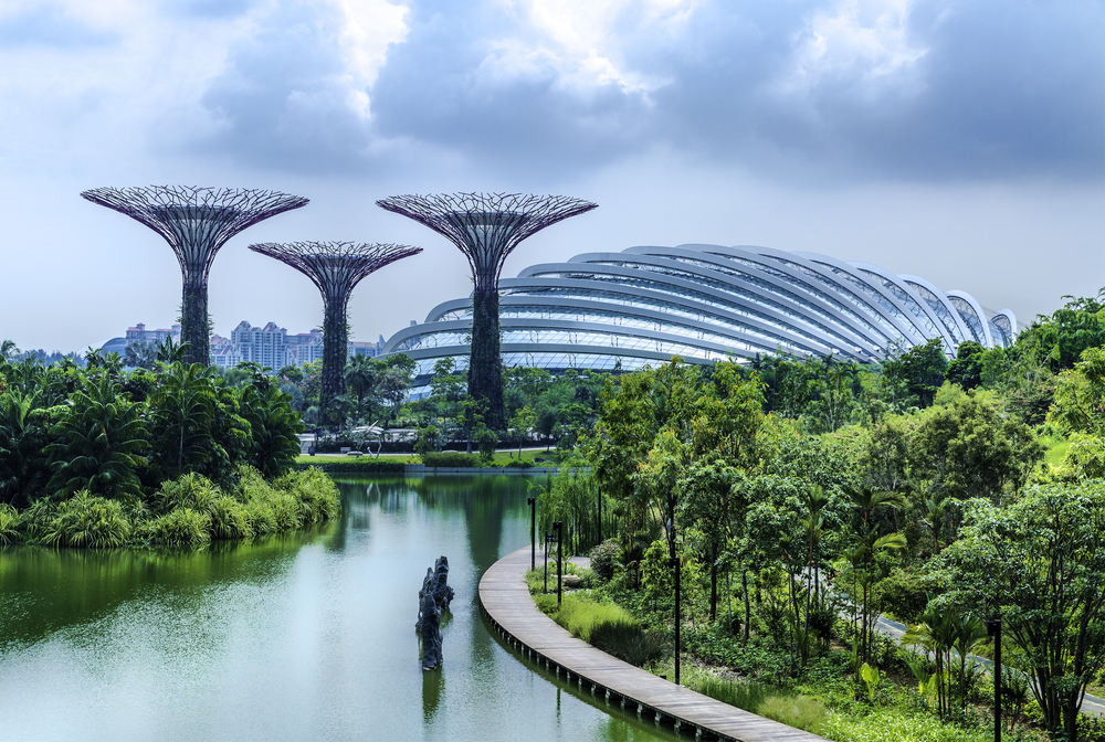 Walk the  OCBC Skyway.  Supertrees- vertical Gardens by the Bay, Singapore
